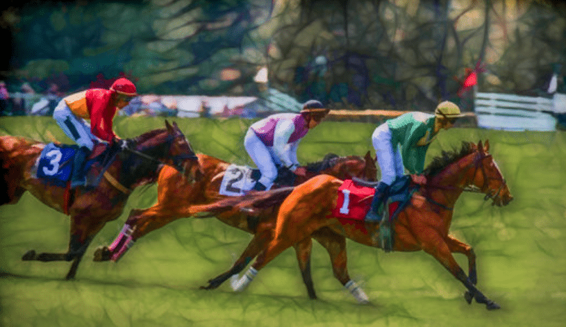 Horse Racing - On-course Betting