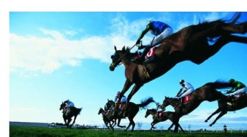 Horse Racing - Ownership